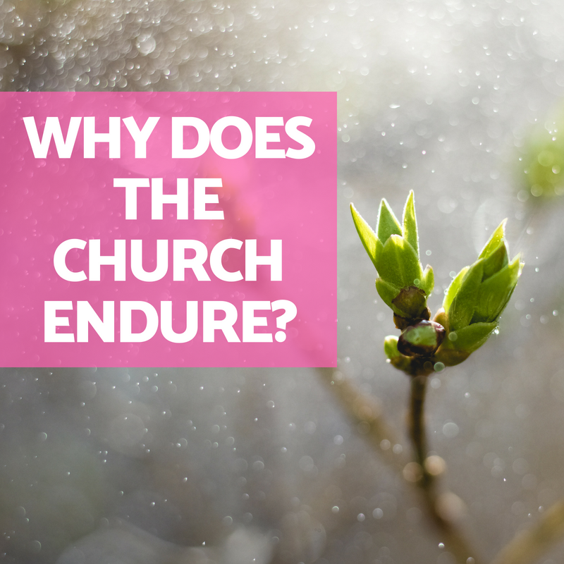 Why Does the Church Endure